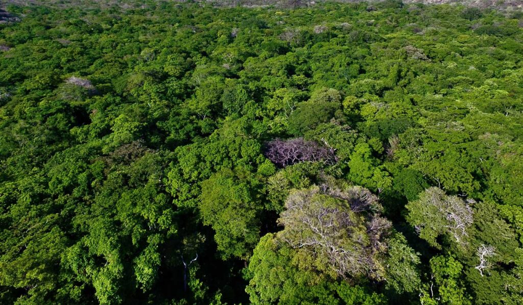 WHY BUY NATURAL LANDS IN COLOMBIA?